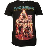 Iron Maiden - T-Shirt Wildest Dream Vortex - schwarz